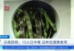 15人已中毒,不少人都吃过,这种豆谨慎食用