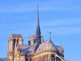 巴黎圣母院塔尖公鸡找到了 珍贵文物安置地点将保密