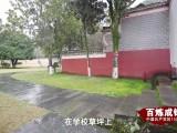 百炼成钢:中国共产党的100年 第11集《井冈星火》
