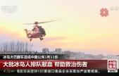 冰岛大巴翻车造成中国公民1死11伤