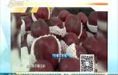 五个苹果刮出半斤蜡 水果打蜡危害大吗?