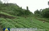 陕西:移民搬迁助力乡村振兴