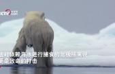 NASA用動畫展示北極海冰消融 2050年北極海冰可能完全消