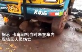 印度恐怖闪电击中卡车 40多只羊当场死亡