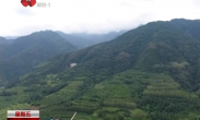 西安市提升秦岭地区景观环境 提升绿色生态系统