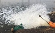 调查:鱼塘超量用药1次30箱! 养殖户从来不吃自养鱼