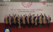 习近平出席亚太经合组织第二十四次领导人非正式会议并发表重要讲话 强调面向未来开拓进取 共同绘制亚太合作的宏伟画卷