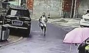姑娘被抢钱穿高跟鞋千米追敌 猛将!扑倒劫匪终夺回2.4万
