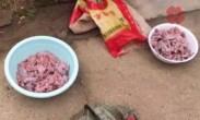 农民抓114只癞蛤蟆宰杀 被警方刑拘
