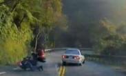 男子山路逆行14次酿惨剧 离谱司机竟称对方也有错