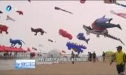 """厦门沙滩风筝节 开启空中""""动物海洋"""""""