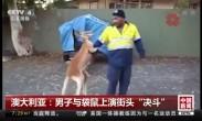 """澳大利亚:男子与袋鼠上演街头""""决斗"""""""