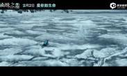 《南极之恋》赵又廷杨子姗极光中为爱前行