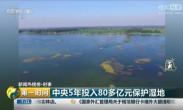 央行5年投入80多亿元保护湿地
