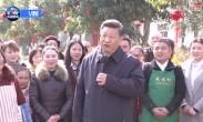 习近平:向全国各族人民致以春节的问候