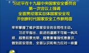 习近平:落实国家安全观 开创新时代国家安全工作新局面