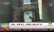 英国:彬彬有礼 小猫爬上墙头按门铃