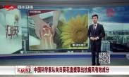 中国科学家从向日葵花盘提取出抗痛风有效成分