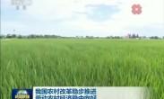 我国农村改革稳步推进 带动农村经济稳中向好
