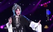 豫剧名家苗文华 桑派代表曲目《桃花庵》