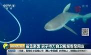 鲨鱼来袭 男子持刀自卫视频看呆网友