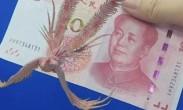 人民币防伪有新方法 AR技术让钱动起来