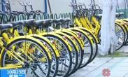 """共享单车""""退烧""""期待有序发展 健康发展需多方共享共治"""