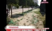 《党风政风热线》:阎良区迎宾大道绿化带缺失 工程施工不规范