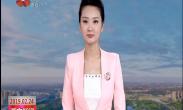媒体看西安 人民日报关注书香之城 政务服务 澎湃新闻聚焦西安年·最中国系列活动