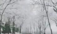 北京再次又双叒叕下雪了,乍暖还寒时候,梦回冬季