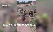 一群自行车手营救落水鹿被救后小鹿二话不说撒腿就跑