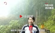 9月飞雪!四川黄龙景区下大雪,游客上午短袖下午棉袄
