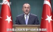 土耳其宣布暂停在叙军事行动这不是停火