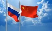 中国外交部_中俄将积极开展反干预合作