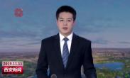 """西安追赶超越2019 古城加速""""绿""""动 西安前三季度绿化建设成效显著"""
