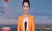 """""""西安脱贫的故事""""互动访谈 蓝田县以党建引领集体经济 发展产业助推脱贫攻坚"""