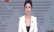 """2020春节期间""""中国年·看西安""""系列文化旅游活动发布会召开"""