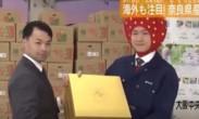 日本天价草莓1颗900元_中国香港买家拍下