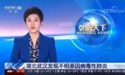 湖北武汉发现不明原因病毒性肺炎 患者增至59例 已排除SARS病原