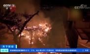 意大利西西里岛发生森林大火