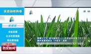 区县融媒联播丨  长安区:农业发展让乡村更美丽 群众更幸福