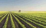 去年我国农产品加工业营收超23.2万亿