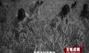 百炼成钢:中国共产党的100年 第38集《送瘟神》