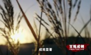 百炼成钢:中国共产党的100年 第43集《联产承包责任制》