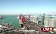 百炼成钢:中国共产党的100年 第67集《迎战国际金融危机》