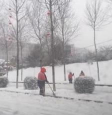 中东部将迎今年最大范围雨雪