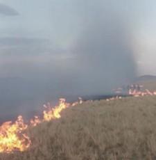 内蒙古成功拦截蒙古国草原入境火