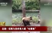 """逗趣!棕熊为挠痒竟大跳""""电臀舞"""""""