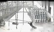 监控下四人推钢架前进 不料被高压电瞬间电焦
