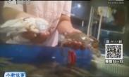 实拍黑心老板为让螃蟹起死回生 用两根手指拨弹螃蟹腿